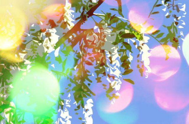 На Ставрополье 25 мая начнётся форум творческих союзов «Белая акация»