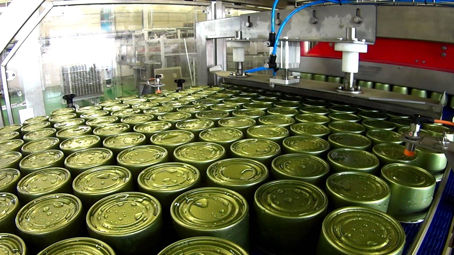«Первый Георгиевский консервный завод» перевооружён наполовину