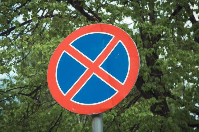 Автомобилисты Ставрополя предупредили о знаке, «спрятавшемся» за ветками деревьев