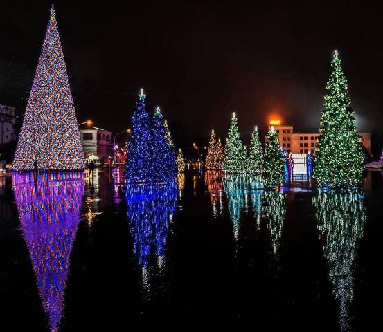 Ставрополь вошёл в топ-10 городов с самыми высокими новогодними ёлками