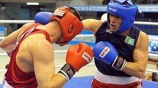 В столице СКФО проходит Всероссийский боксерский турнир