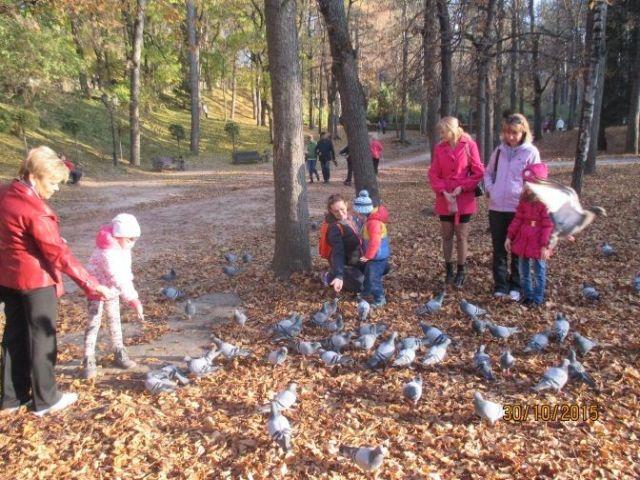 На Ставрополье особенных детей начали лечить ландшафтотерапией