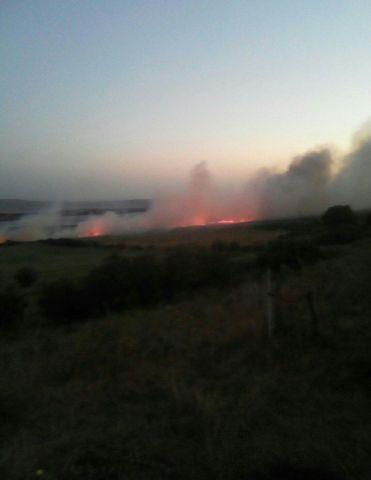 Вблизи Ставрополя потушили крупный пожар
