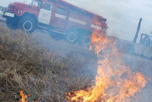 В Ставропольском крае сгорело 100 гектаров пшеницы