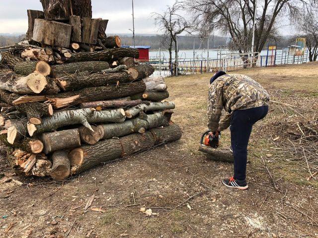 На ессентукском озере в разгаре работы по санитарной обрезке и омоложению деревьев