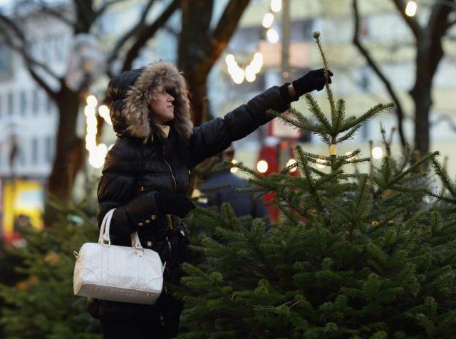 Новогодние базары ждут жителей Ставрополя с 15 декабря