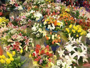 Пресечены две попытки нелегального ввоза цветов