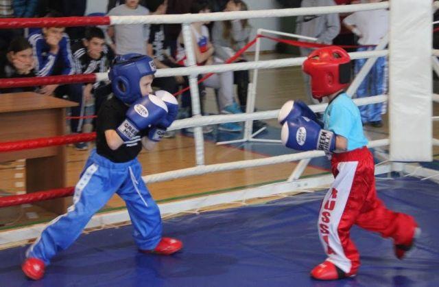 Первый открытый турнир по кикбоксингу прошёл в Ставрополе