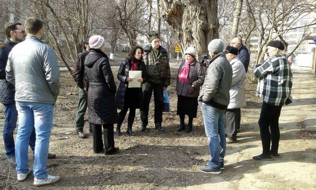 В центре Ставрополя вырубили фруктовые деревья