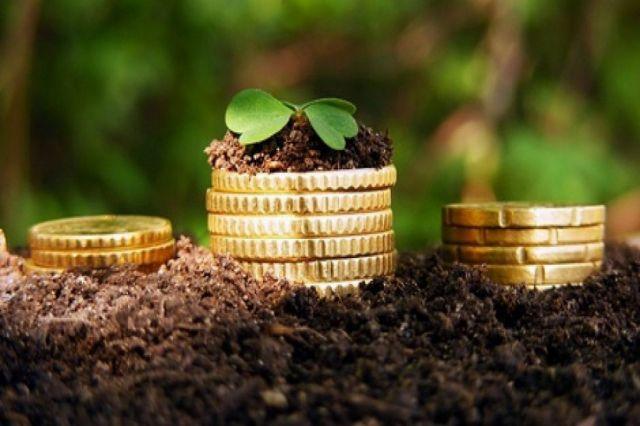 Ставрополье получит субсидии на развитие сельского хозяйства
