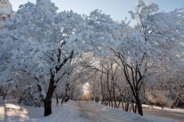 В Гидрометцентре рассказали, какой будет предстоящая зима в СКФО