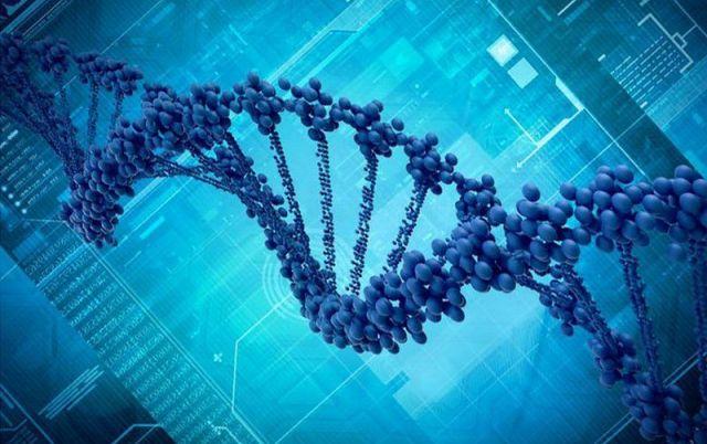 На Ставрополье по результатам ДНК-исследования установлен подозреваемый в совершении уличных грабежей