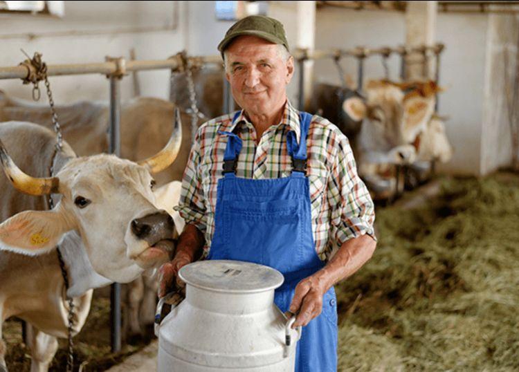 Ставропольские семейные фермы получили гранты на 571 миллион рублей