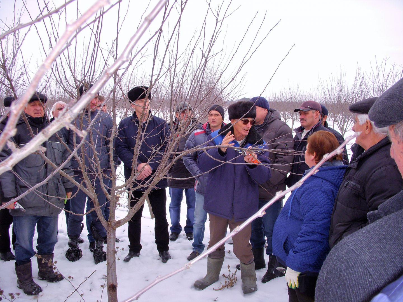 Минсельхоз: усиленные сады— новая точка роста для Ставрополья