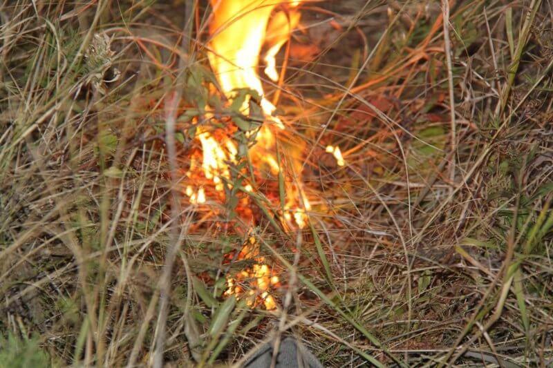 В Курском районе сохраняется чрезвычайная пожароопасность