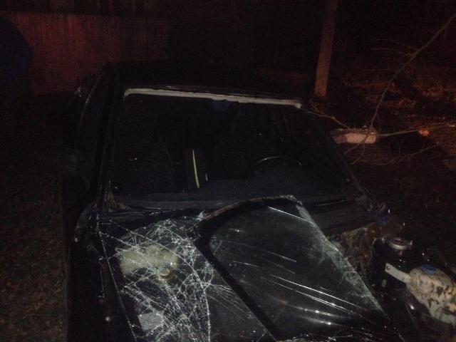 На Ставрополье не имевший прав водитель врезался в дерево