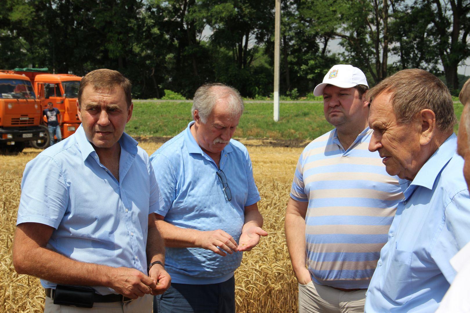Ставропольские аграрии перешагнули экватор уборочной страды