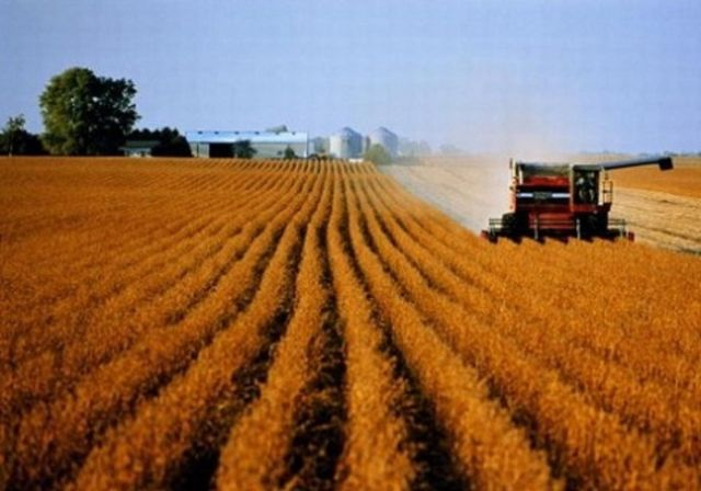 Губернатор Ставрополья: Размер выделяемой сельхозземли должен быть сокращён до одного пая