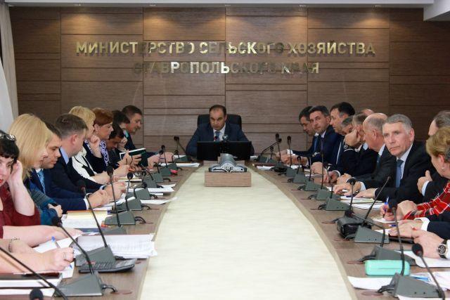 Наразвитие мелиорации наСтаврополье изфедерального бюджета выделили более 170 миллионов рублей