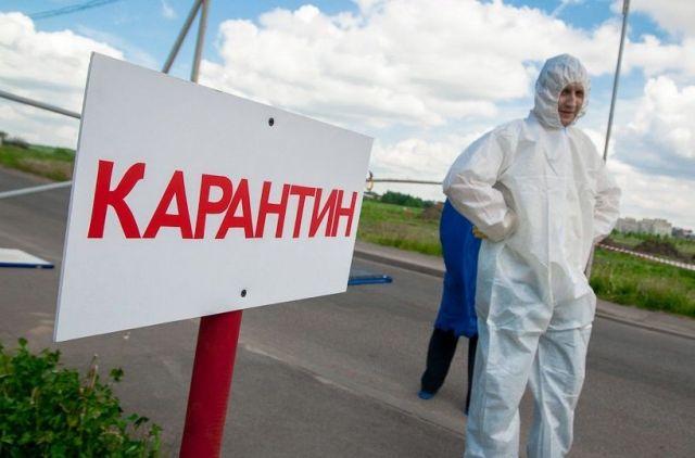 В Курском районе Ставрополья выявлен очаг бешенства