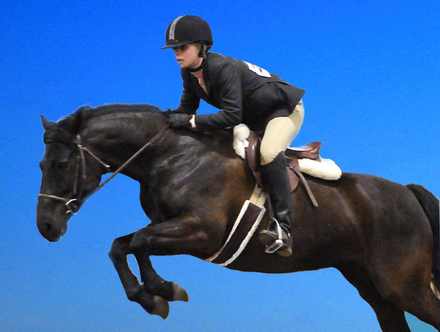 Конно-спортивные соревнования на кубок губернатора пройдут на Ставрополье