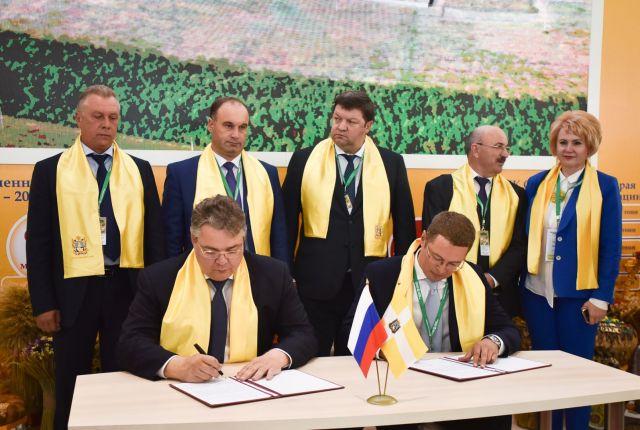 На «Золотой осени» Ставропольский край заключил инвестсоглашений на сумму более 33 миллиардов рублей