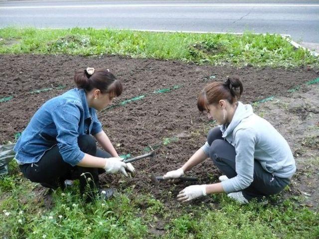 На Ставрополье в свободное от учёбы время трудятся более 9 тысяч подростков