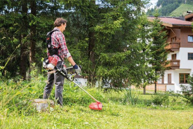 Собственников земельных участков обязали регулярно косить траву и убирать мусор