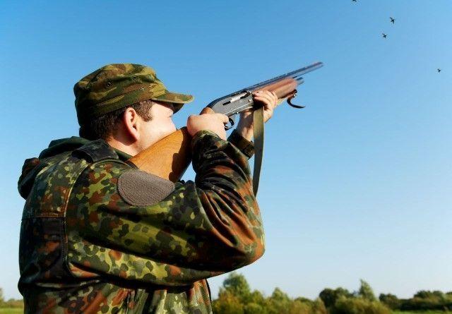Охота на пушных и копытных животных откроется в крае 7 ноября