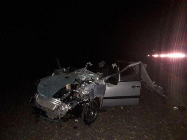 На Ставрополье при столкновении с коровой пострадали водитель и пассажир автомобиля