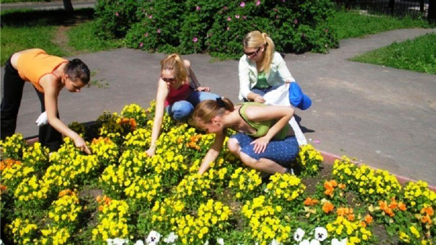 НаСтаврополье летом трудоустроят неменее 7,4 тыс. школьников