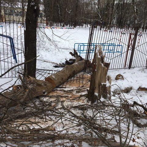 Штормовой ветер усилится и сохранится в Ставропольском крае в течение двух суток