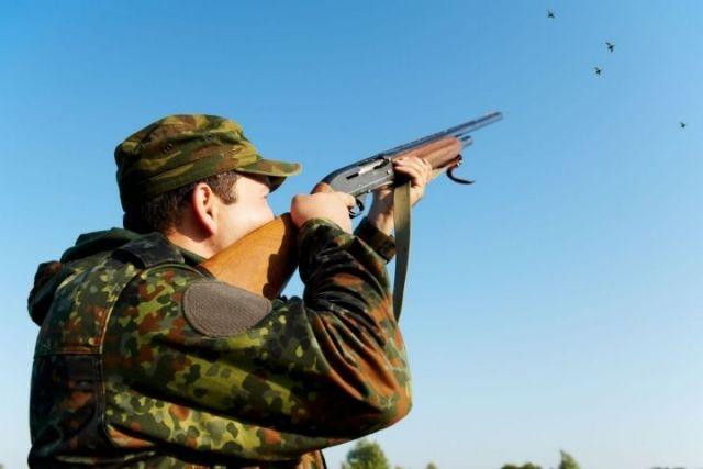 На Ставрополье распределены разрешения на добычу самцов фазана