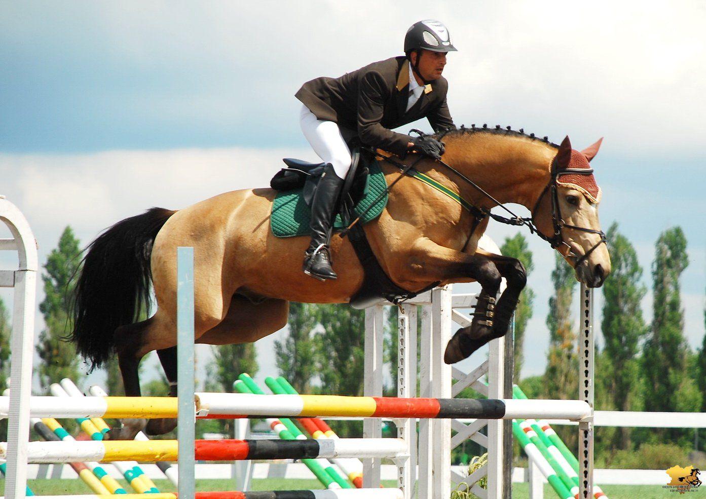 Ставропольчанки победили в соревнованиях по конкуру