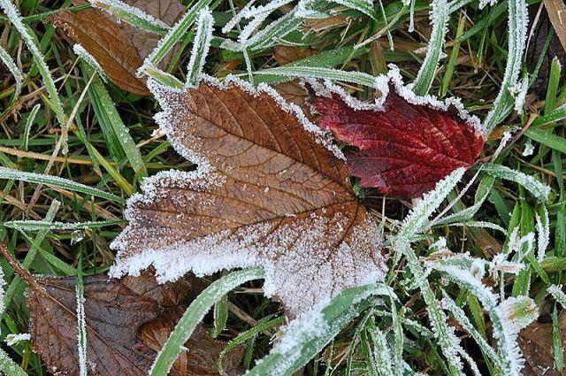 Похолодание в Ставропольском крае сохранится до конца недели