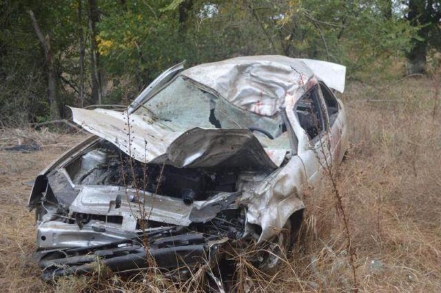 На Ставрополье превысивший скорость водитель сбил животное
