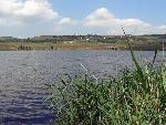 Из госзаказника Кравцово озеро вывезено 70 кубометров мусора