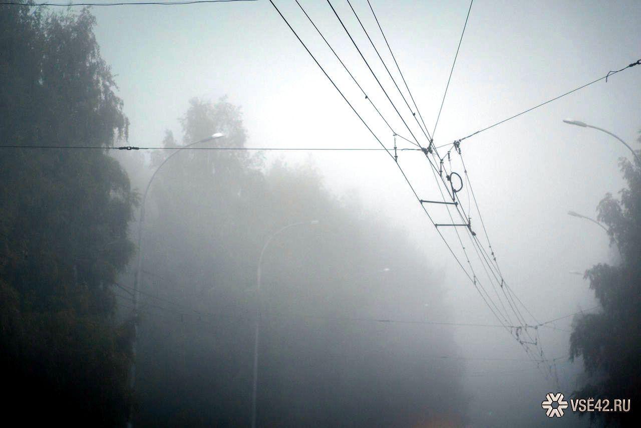 Теплая иветреная погода сохранится вКраснодарском крае