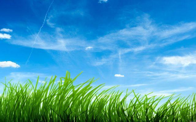 Ставрополье заняло 36 место в экологическом рейтинге субъектов РФ