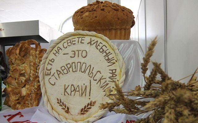 «Праздник хлеба наЮге России» состоится наСтаврополье