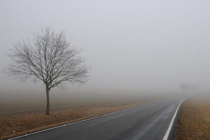ГАИ просит всильный туман ставропольчан снижать скорость авто