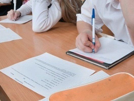 В школах Ставрополья проходят всероссийские проверочные работы для школьников 4 классов