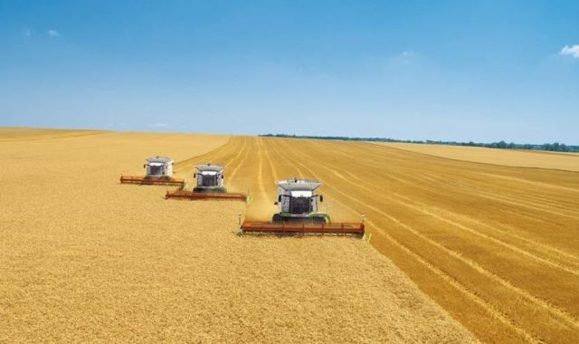 Четыре района края преодолели стотысячный рубеж по намолоту зерна