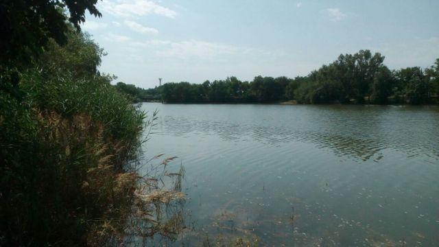 Со дна городского озера в Невинномысске достали тело мужчины