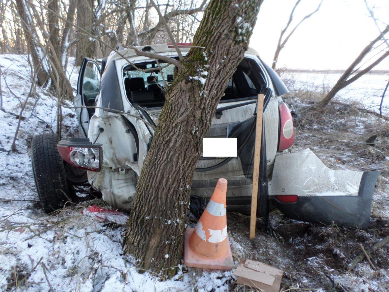 На Ставрополье легковушка врезалась в дерево, пострадали два человека