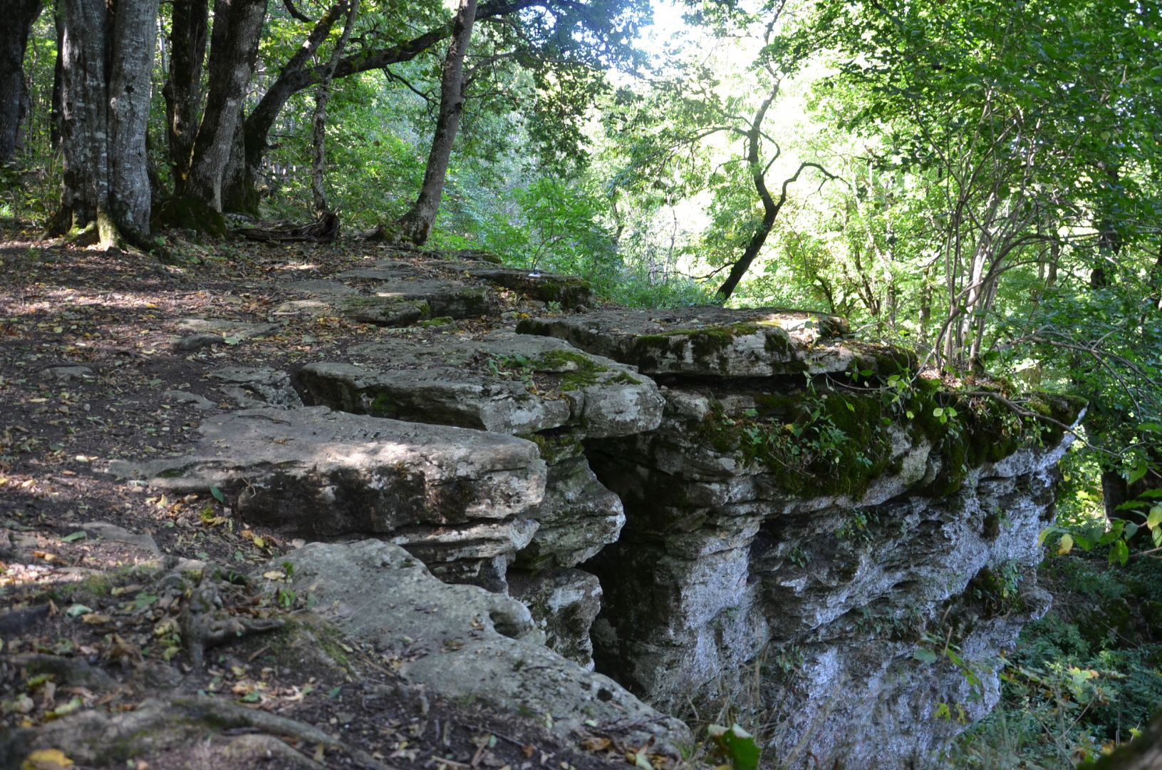 На Ставрополье активно развивают экотуризм