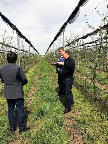 Свыше 44% понесенных затрат государство компенсирует ставропольским садоводам