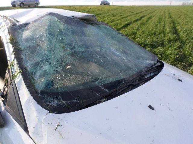 В Курском районе перевернулся автомобиль, пострадала семья