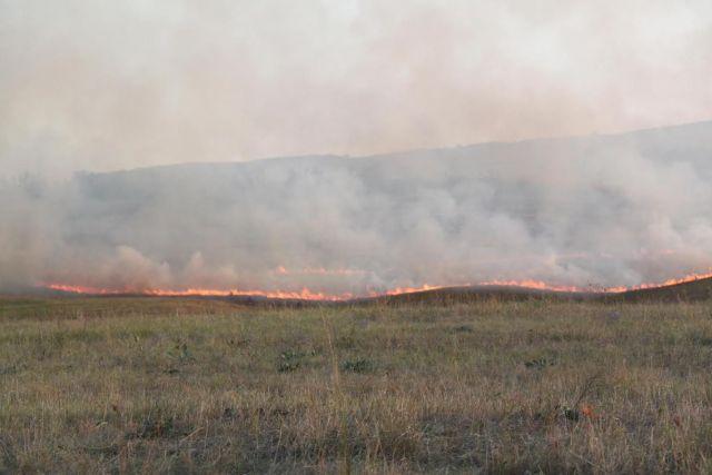 В Ставропольском крае горело пшеничное поле