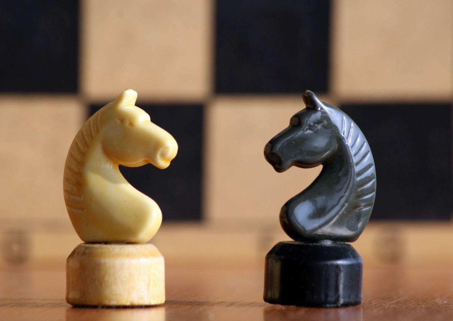 На Ставрополье пройдёт краевой турнир по шахматам